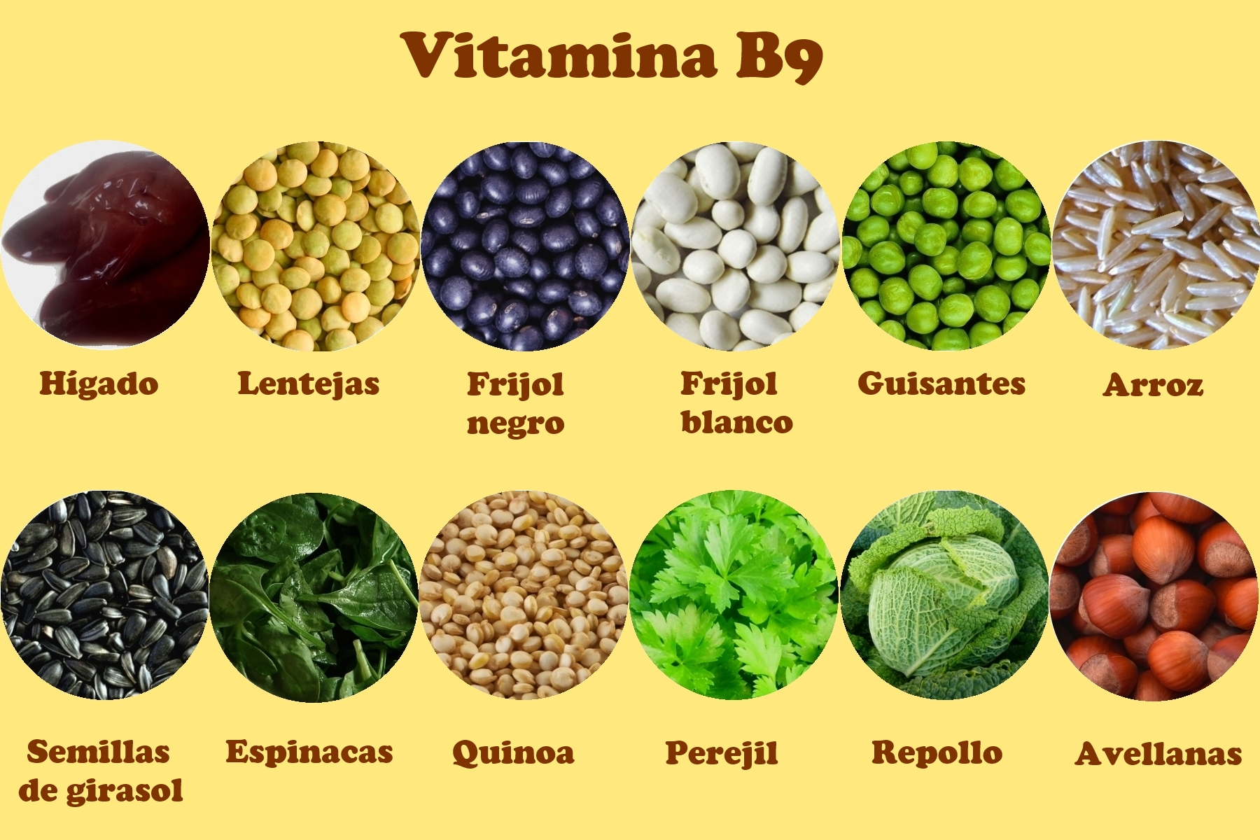 Las mejores vitaminas para el cerebro mejores el mejor sitio para saber que elegir - Tabla de alimentos ricos en hierro ...