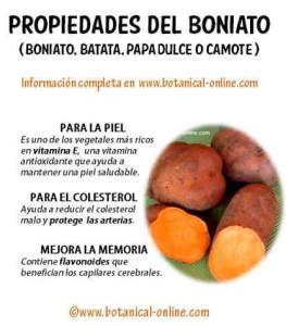 Propiedades_boniato